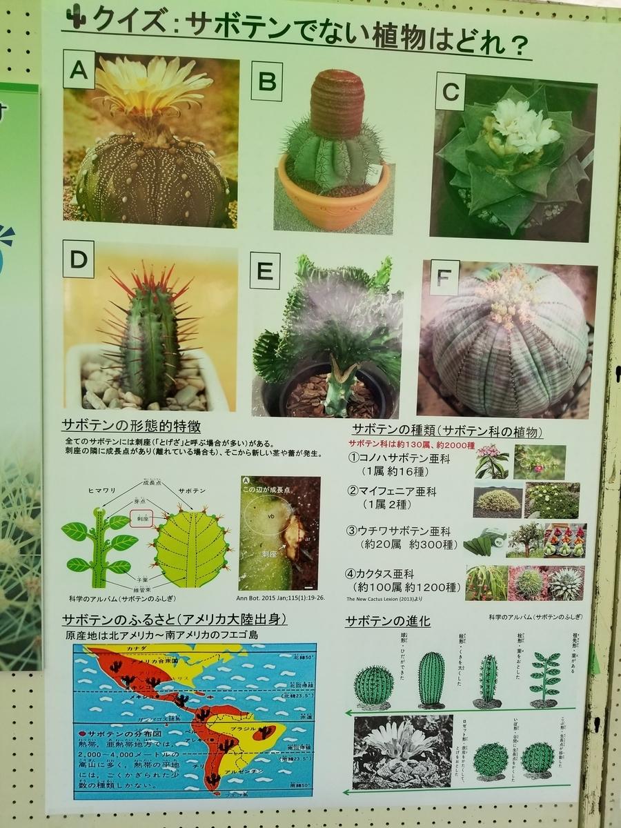 f:id:kasugai-saboten:20190427152030j:plain