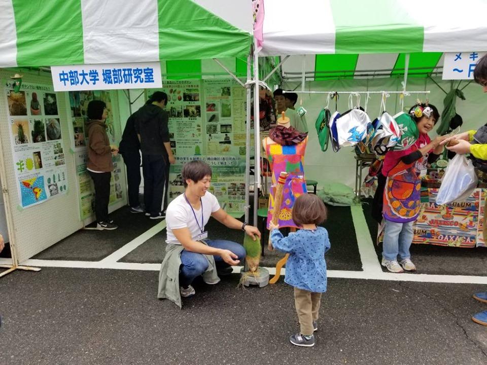 f:id:kasugai-saboten:20191019190147j:plain