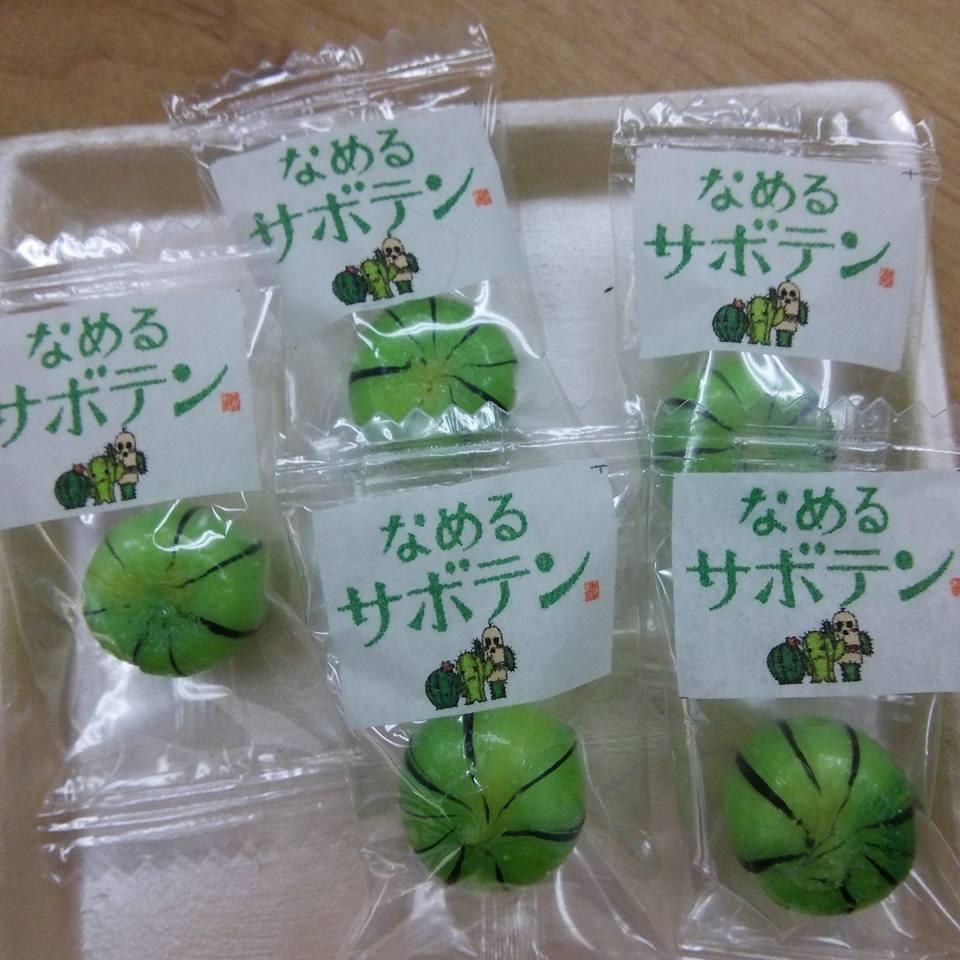 f:id:kasugai-saboten:20200206140603j:plain