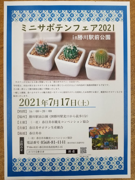 f:id:kasugai-saboten:20210709183557j:plain