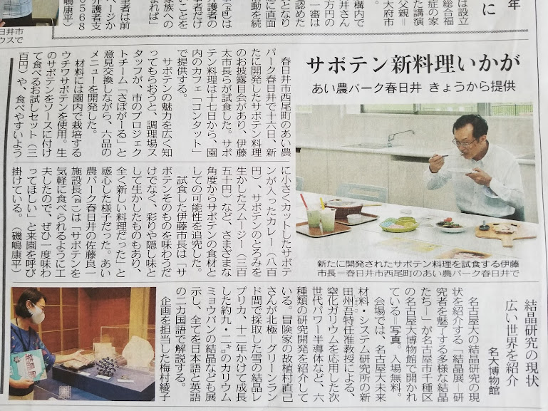f:id:kasugai-saboten:20210724132421j:plain