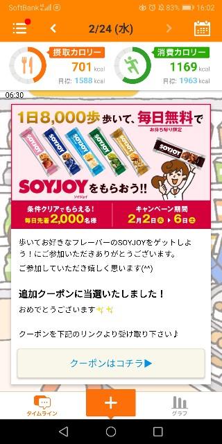 f:id:kasumi_setuyaku:20210225002606j:plain
