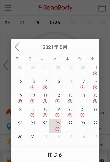 f:id:kasumi_setuyaku:20210526235156j:plain