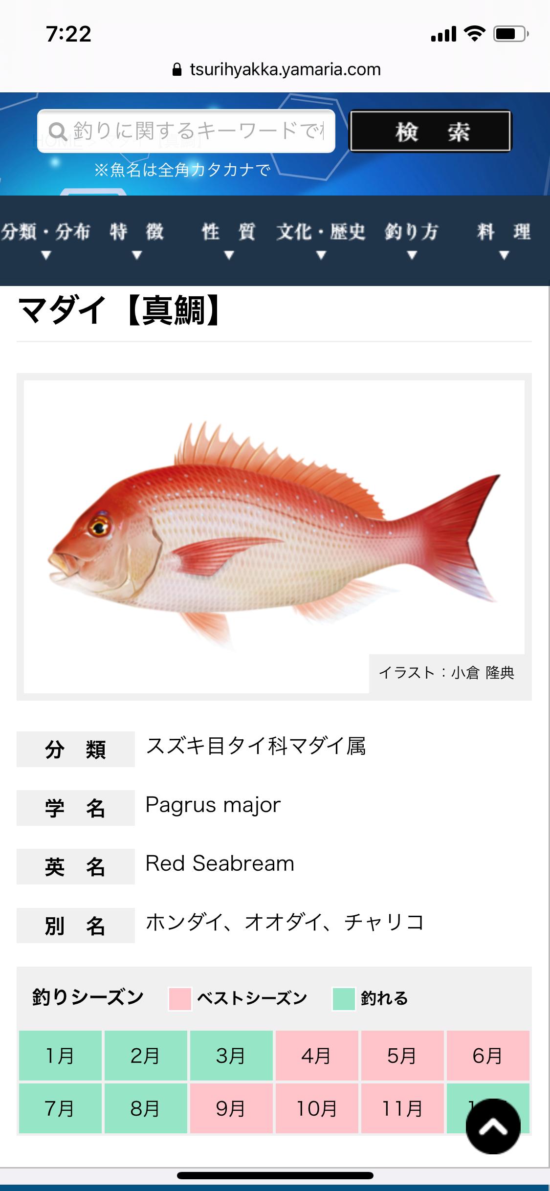 f:id:kasumikemuri06655:20210411072326p:image
