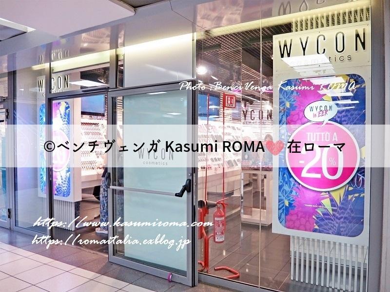 f:id:kasumiroma:20190604190037j:plain