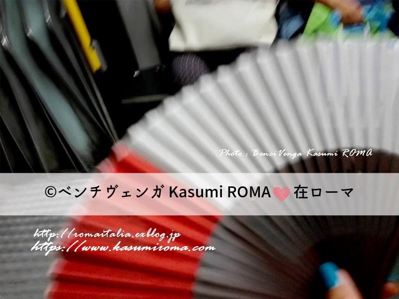 f:id:kasumiroma:20190604235051j:plain