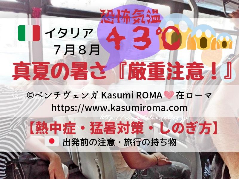 f:id:kasumiroma:20190605000438j:plain