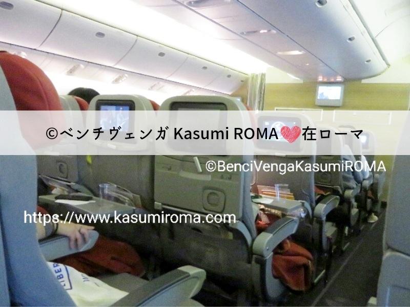 f:id:kasumiroma:20190605043932j:plain