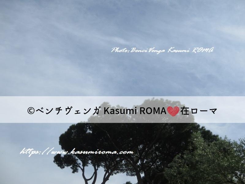f:id:kasumiroma:20190607235904j:plain
