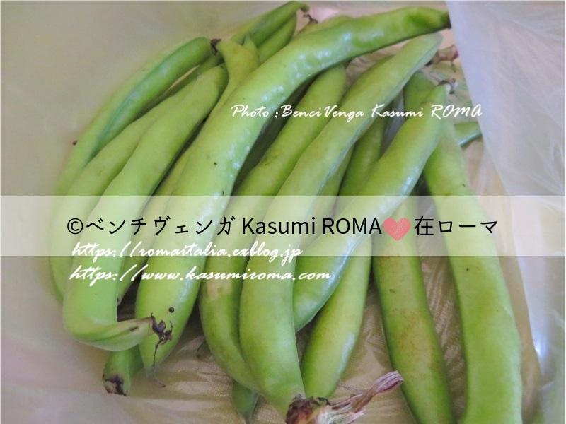 f:id:kasumiroma:20190612195640j:plain