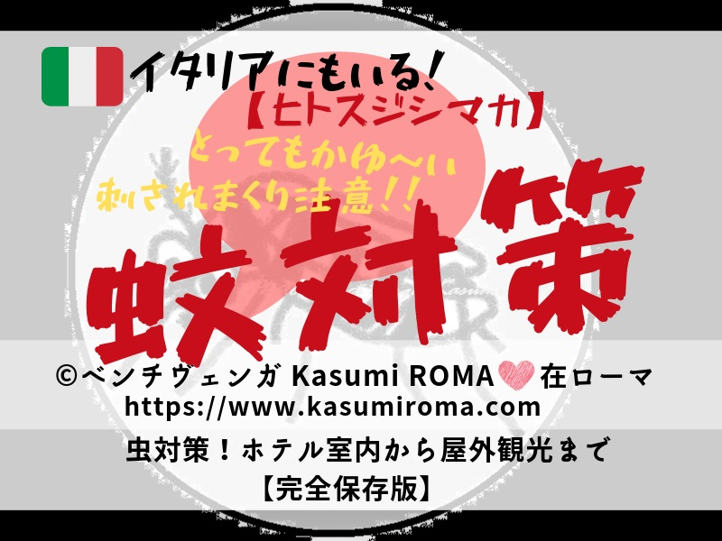 f:id:kasumiroma:20190622042822j:plain