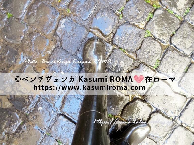 f:id:kasumiroma:20190828221536j:plain