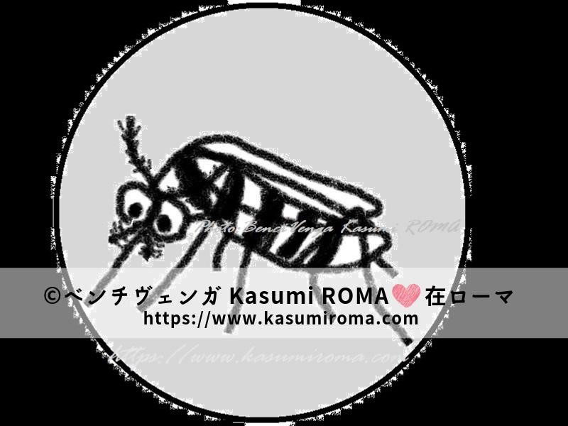 f:id:kasumiroma:20190903191742j:plain