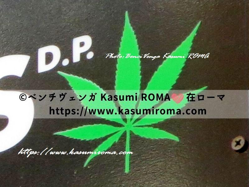 f:id:kasumiroma:20191108191951j:plain