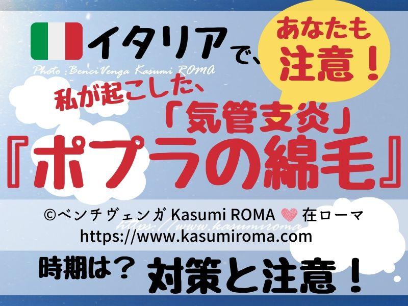 f:id:kasumiroma:20200206200503j:plain