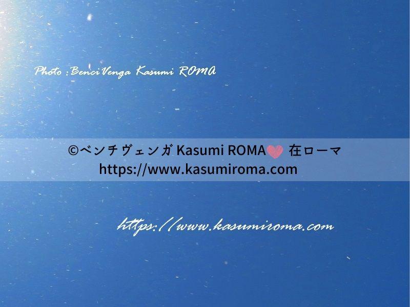 f:id:kasumiroma:20200206201305j:plain