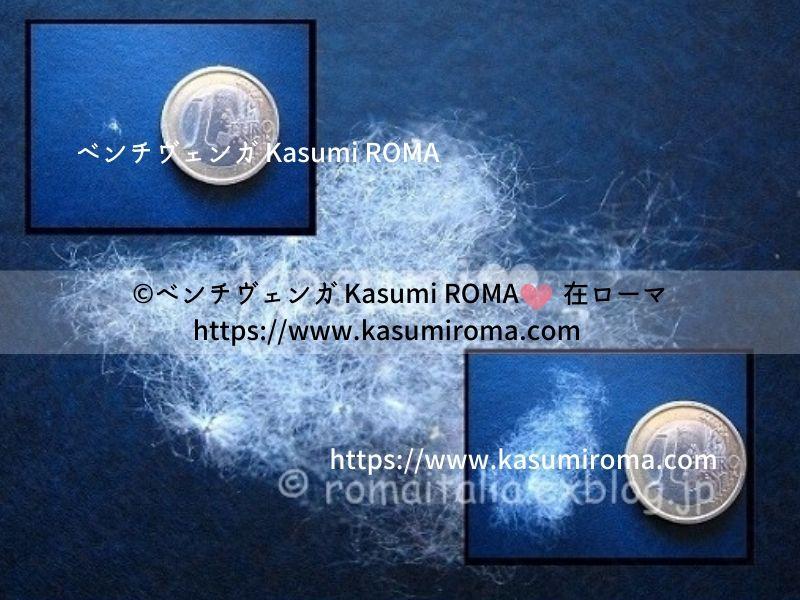 f:id:kasumiroma:20200206201435j:plain