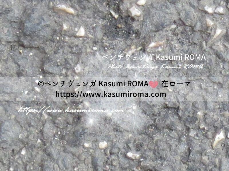 f:id:kasumiroma:20200206201600j:plain