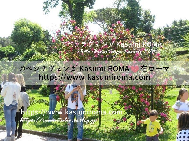 f:id:kasumiroma:20200212180243j:plain
