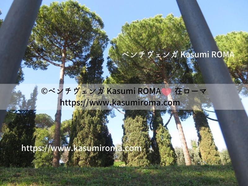 f:id:kasumiroma:20200216062140j:plain