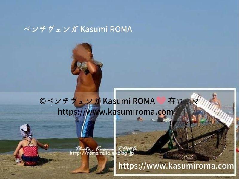 f:id:kasumiroma:20200727042025j:plain