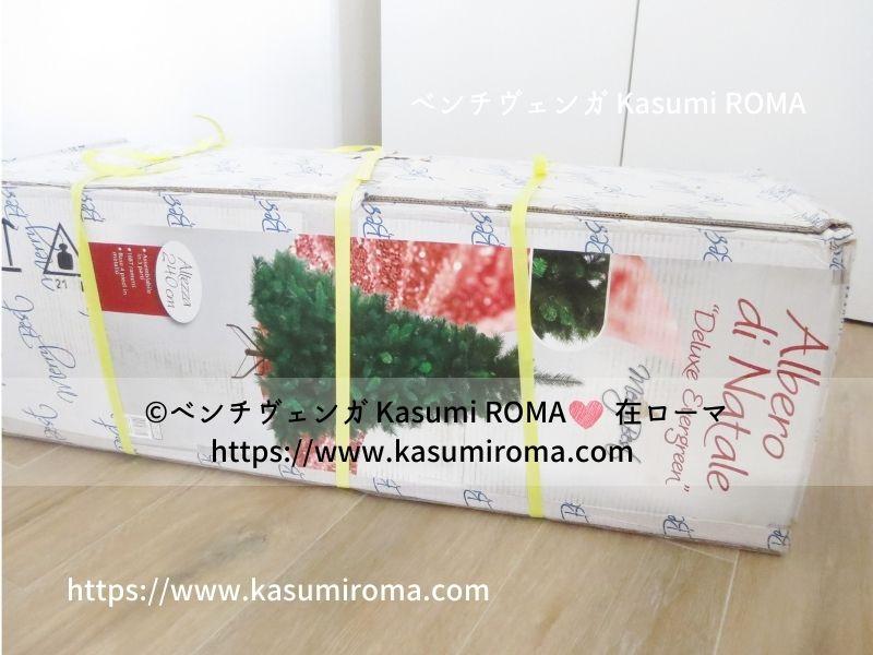 f:id:kasumiroma:20201217012726j:plain