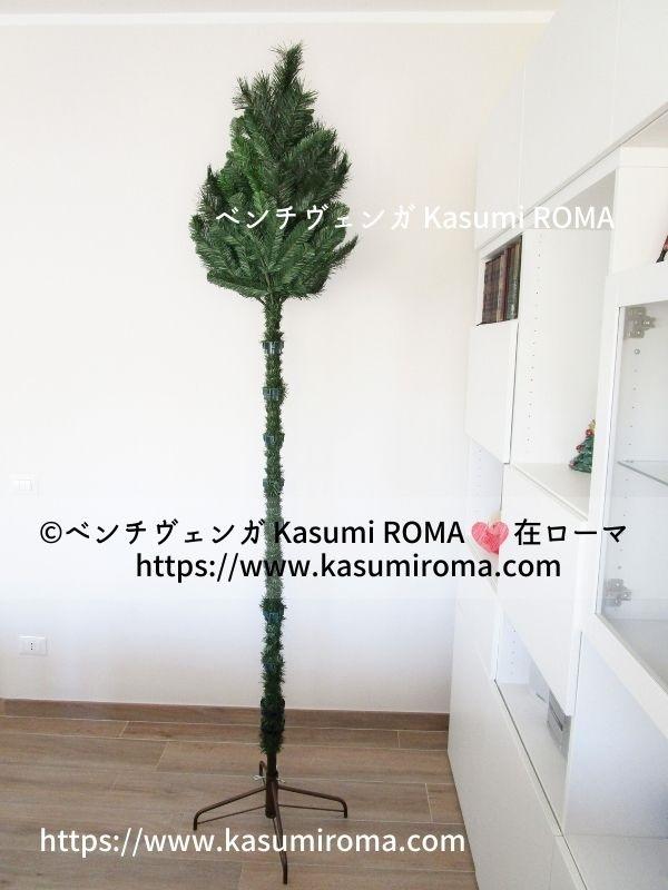 f:id:kasumiroma:20201217013121j:plain