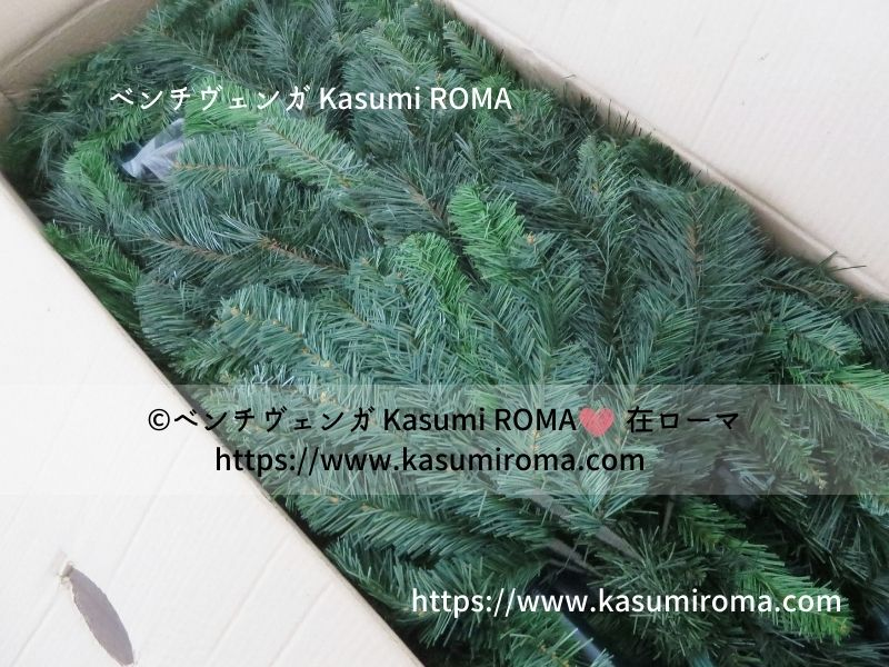 f:id:kasumiroma:20201217013344j:plain