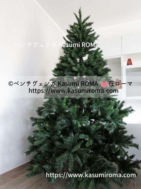 f:id:kasumiroma:20201217013439j:plain