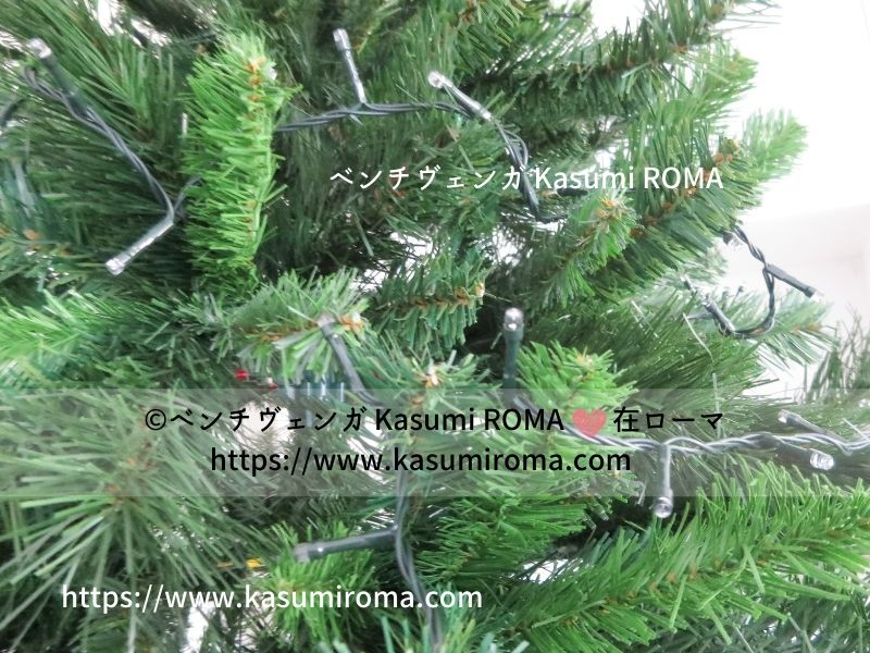 f:id:kasumiroma:20201217013535j:plain