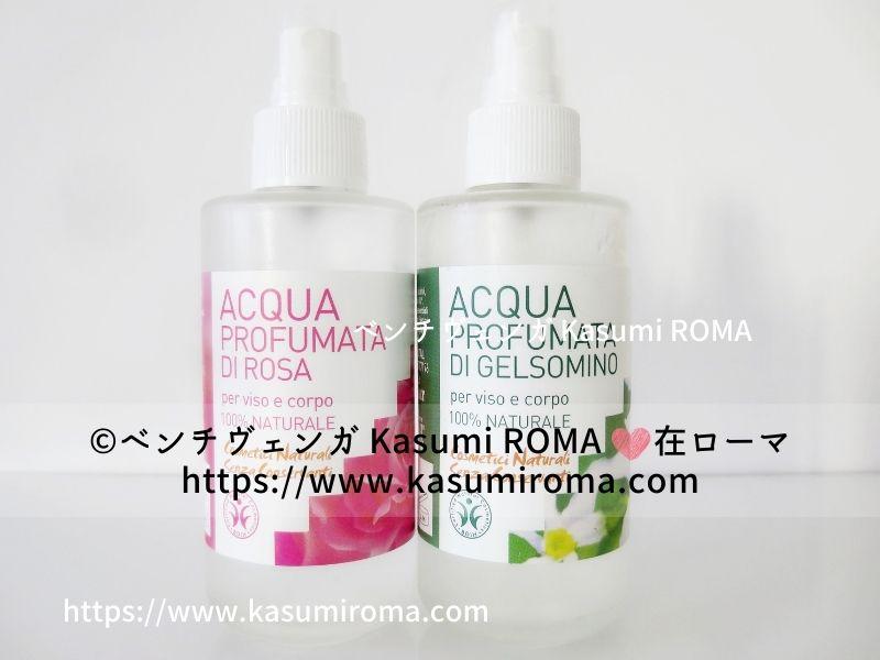 f:id:kasumiroma:20210302003213j:plain