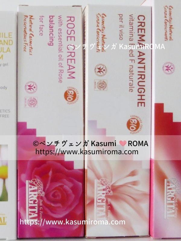 f:id:kasumiroma:20210306072733j:plain