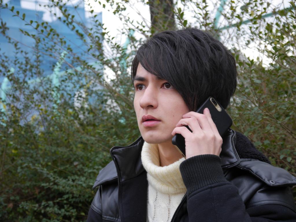 f:id:kasunohirameki:20170208234133j:plain