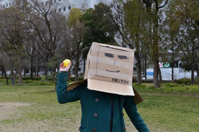 f:id:kasunohirameki:20170408034529j:plain