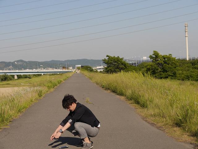 f:id:kasunohirameki:20170625022215j:plain