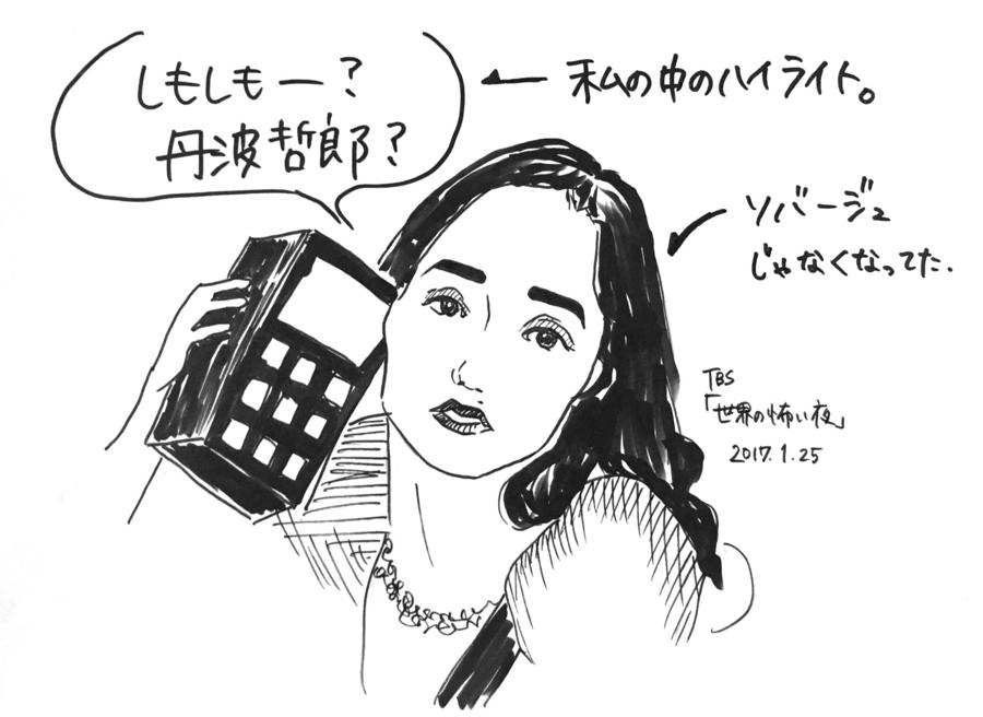 f:id:katahabahiroko:20170127012432j:plain
