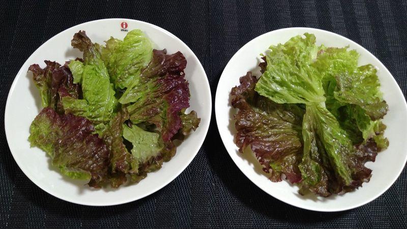 洋風トマト冷しゃぶ&野菜のコンソメスープ_3