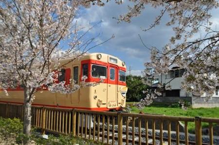 f:id:katamachi:20100405034101j:image