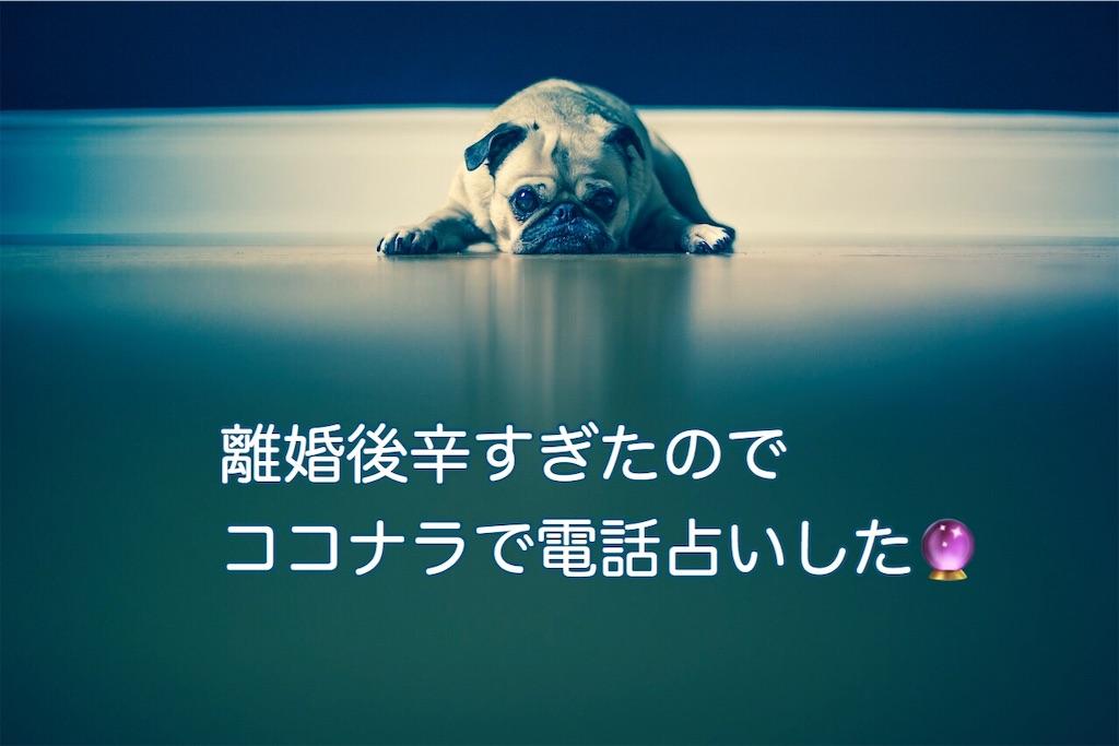 f:id:katamechang:20191012064330j:image