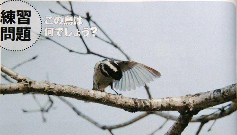 f:id:kataro:20090929160902j:image