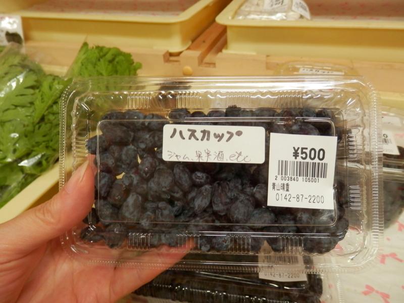 f:id:kataseumi:20170711183529j:plain