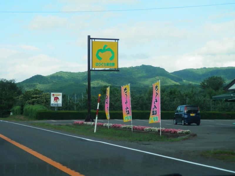 f:id:kataseumi:20170711183535j:plain