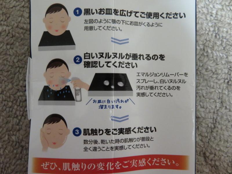 f:id:kataseumi:20170905232241j:plain