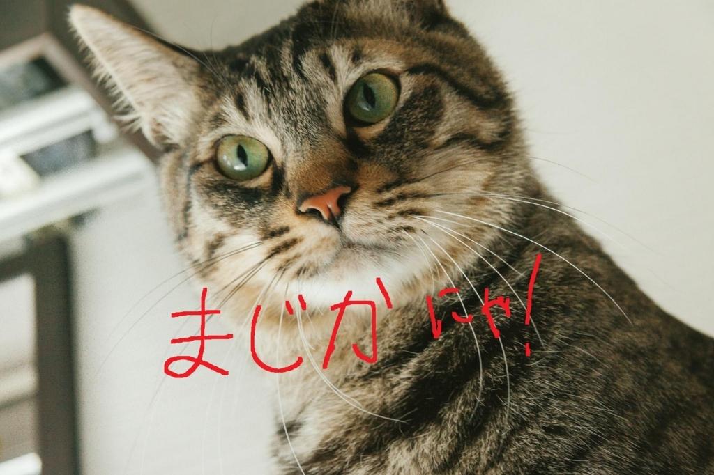 f:id:kataseumi:20171002234221j:plain