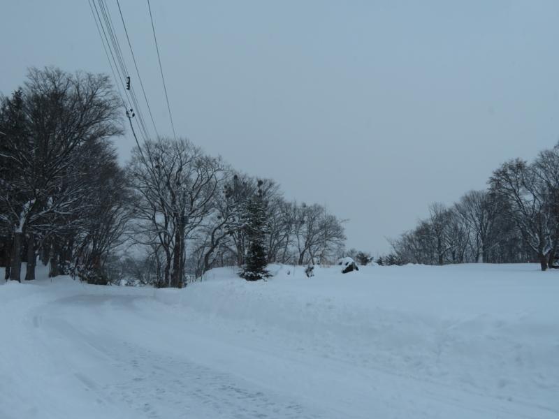 f:id:kataseumi:20171217014328j:plain