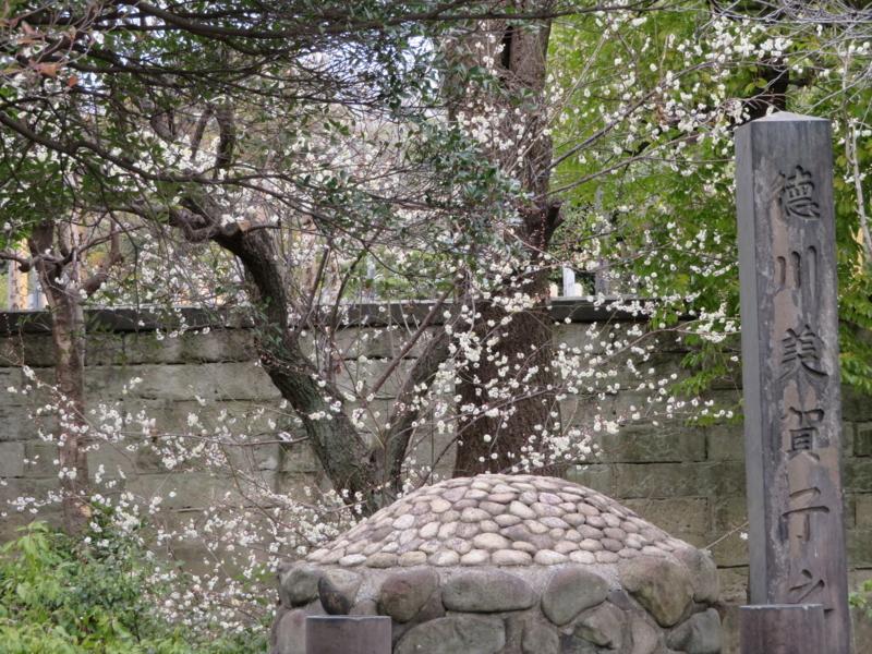 f:id:kataseumi:20180215204625j:plain