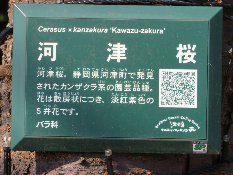 f:id:kataseumi:20180215204917j:plain