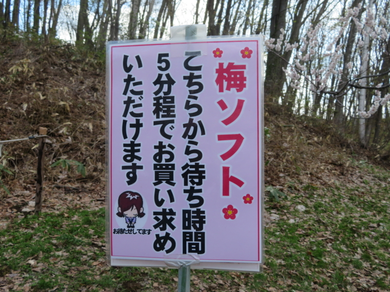 f:id:kataseumi:20180504211025j:plain