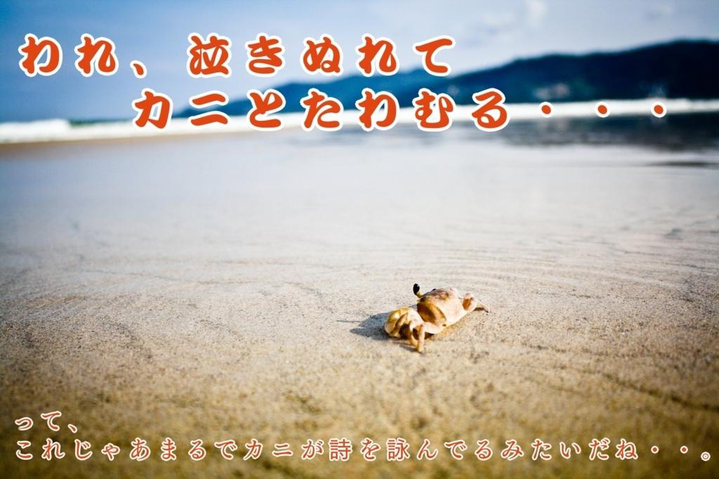 f:id:kataseumi:20180812033812j:plain
