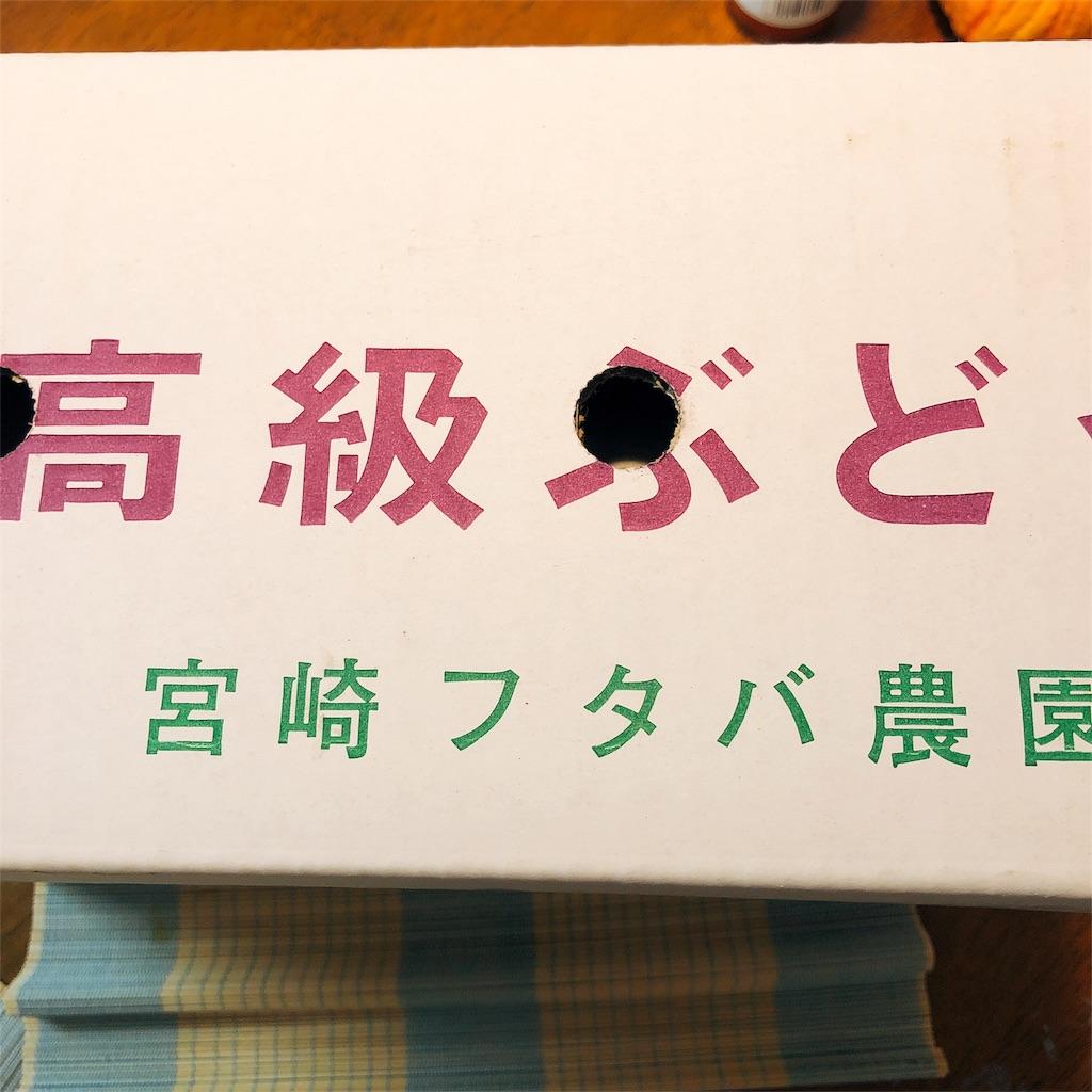 f:id:kataseumi:20180820185858j:plain
